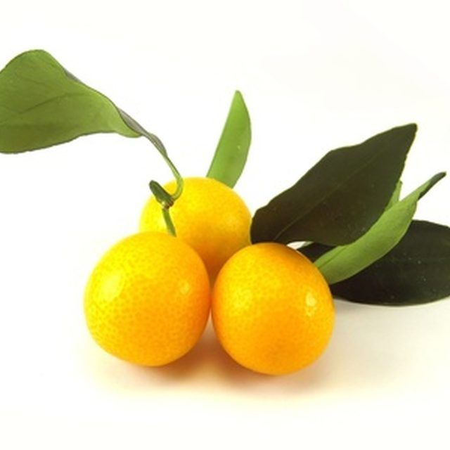 Kumquat fruit