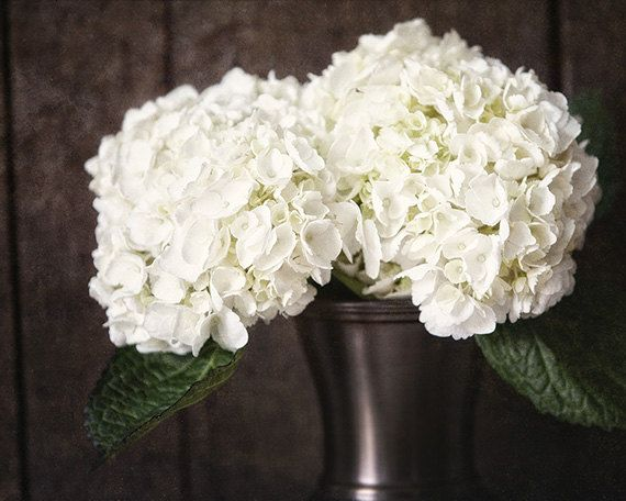 White Flower Pictures - Rustic Decor - Cream Hydrangea Flower Country Home Decor - Brown, Bronze - Bathroom Decor, Bedroom Decor, . on Etsy, $30.00