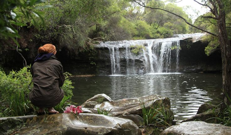 A perfect day trip, the Nellies Glen picnic area offers scenic waterfall views, birdwatching and a range of short walks near Kangaroo Valley.
