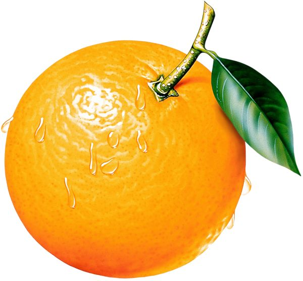 Orange Clipart Picture
