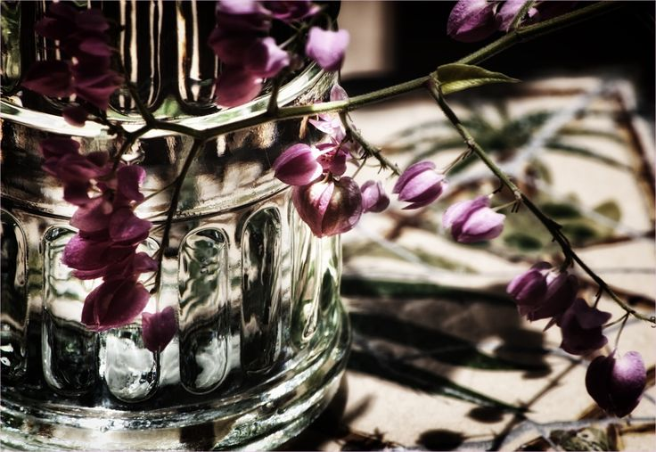 pink flowers in glass bottle