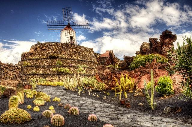 Jardin de Cactus XI, via Flickr.