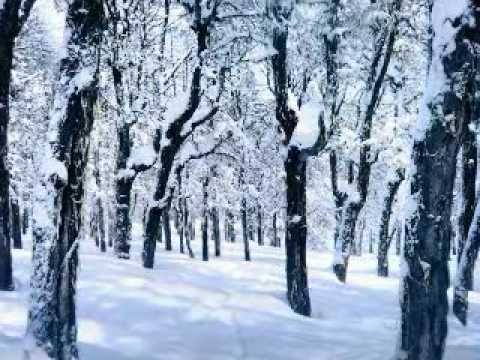 Soy Patagonia es una zamba, con música de Hugo Tarruella y letra de Vicente Jesús Avila. En este video es interpretada por Mario y Vicente Avila.