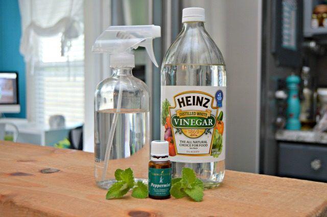 Homemade Bug Spray to Use On Plants | eHow