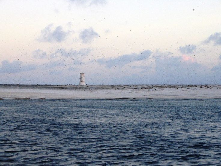Plik:Jarvis Island October 2003.jpg
