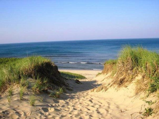 Best Place To Stay On Cape Cod Cape Cod Attractions Cape Cod Hotels Places