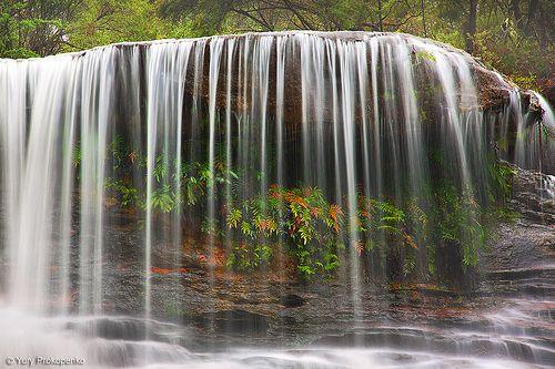 Weeping Rock Waterfall, Blue Mountains, Australia