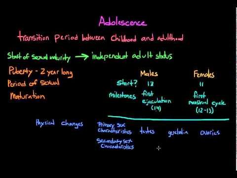 Physical development in adolescence - YouTube