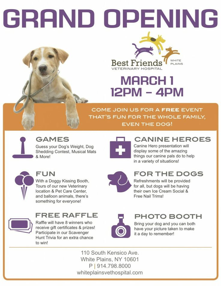 Grand Opening Event Best Friends Veterinary Hospital in