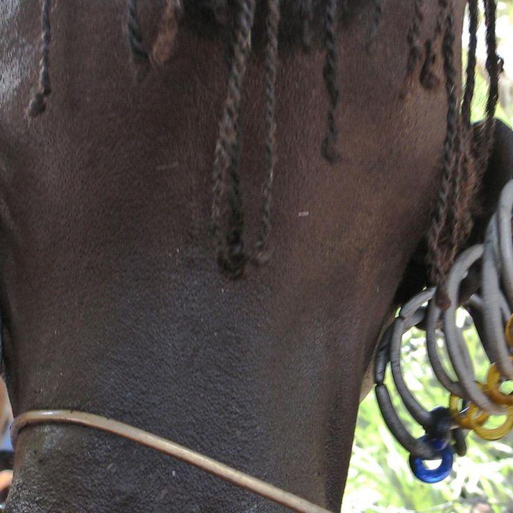 Turkana earrings