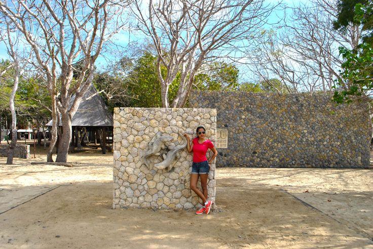 Entrance Gate in Komodo Island