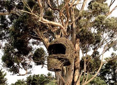 Nested inside the organic exterior framed of branches and sticks, however, sits a hidden steel frame revealing this to be a work of human craft rather than the home of some extinct flying creature.