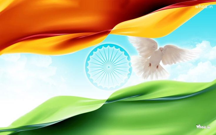 National Flag With Ashok Chakra HD Wallpaper,National Flag HD Wallpaper,15 August HD Wallpaper,Happy Independence Day HD Wallpaper,Greetings HD Images
