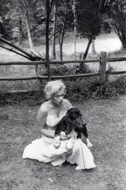 1957: Marilyn with her Bassett Hound, Hugo.