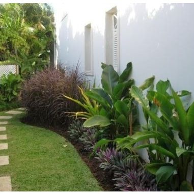 Garden Ideas Tropical 14 best landscape design images on pinterest | landscaping ideas