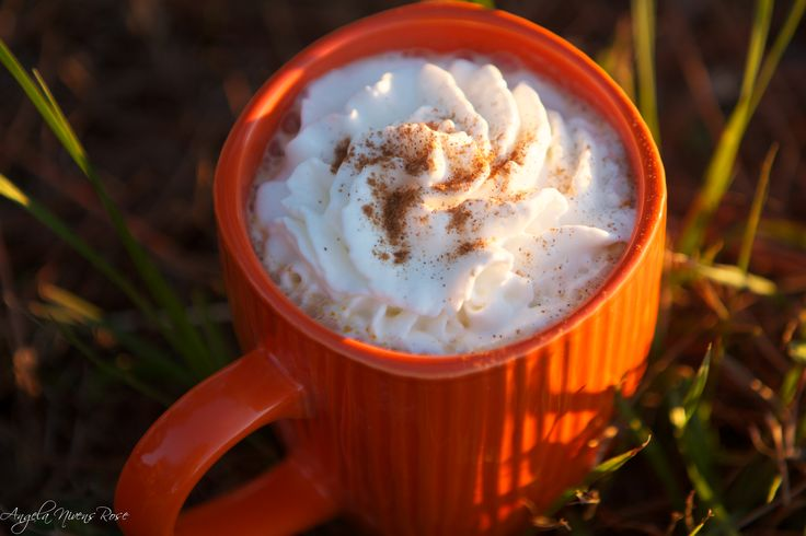 """This week we are featuring the Trim Healthy Mama's Fabulous New """"Pumpkin Pie Sip"""", and it is going to have you passing right by those pumpkin lattes full of sugar and cozy-ing up next to the fire sipping the yummy goodness, all while watching the pou"""