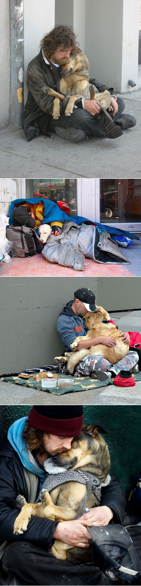 The companionship is heartwarming...the homelessness is so heartbreaking. Dogs Love Humans Regardless Of Their Status