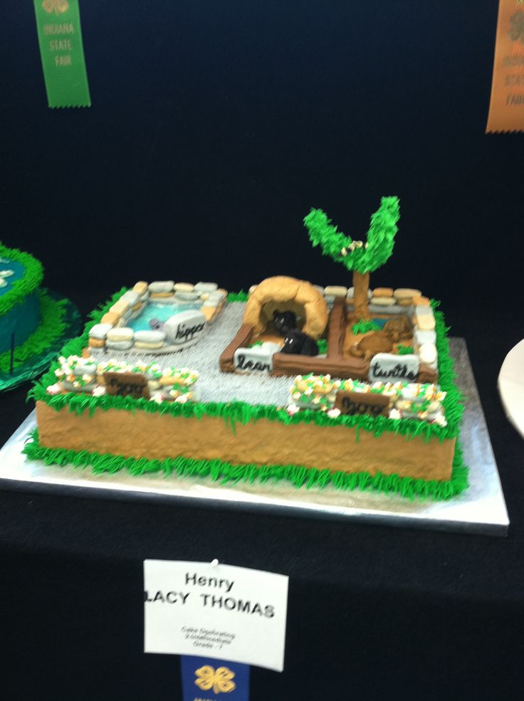 Indiana State Fair 2011 4h Cake Decorating  4H Cake