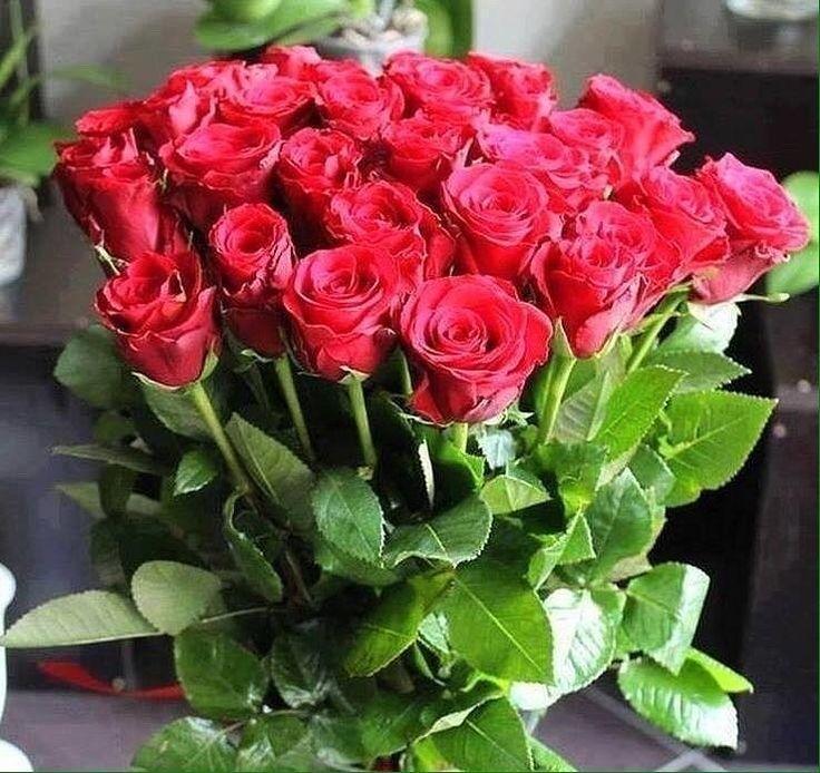 к ногам букет прекрасных роз фото это специалист высокого