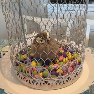 Fun Easter ideas with different decor, diy's and centerpieces.xo