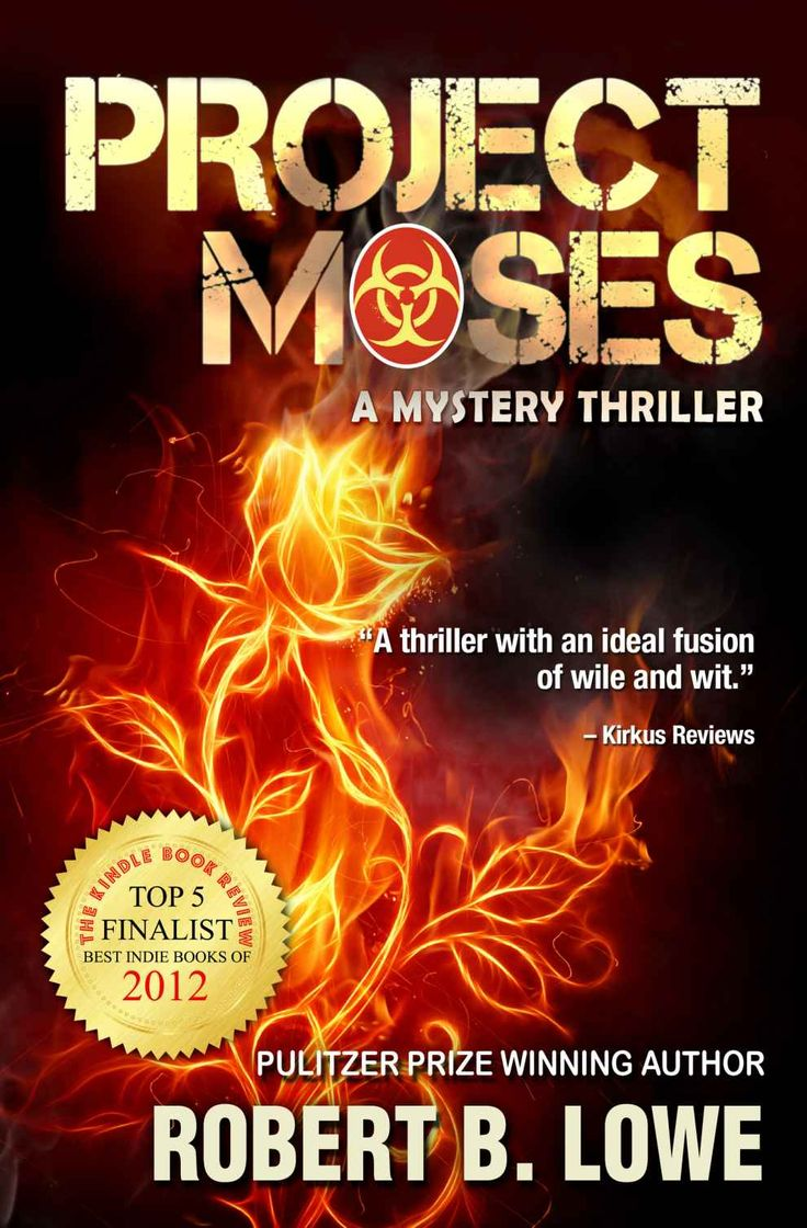 Project Moses (an Enzo Lee Mystery Thriller Book 1)  Kindle Edition By  Robert