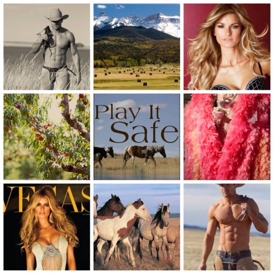 Goodreads | Play It Safe by Kristen Ashley — Reviews, Discussion, Bookclubs, Lists