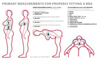 How-to determine bra size