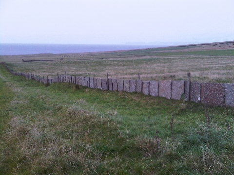 Caithness flagstone walls near Thurso.  Orkney Islands somewhere beyond in the murk.
