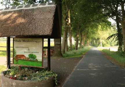 Oude Meulenbrugge - Warnsveld, Appartementen, Mini-camping, Paardentoerisme, Pensionpaarden