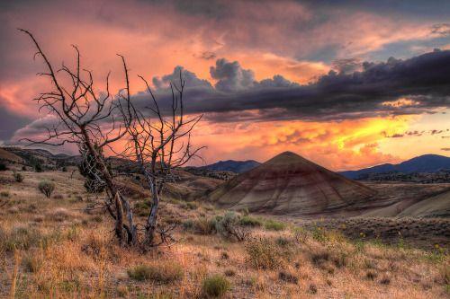 http://traveleze.tumblr.com/post/142395632330/4-splendid-reasons-to-visit-and-explore-oregon