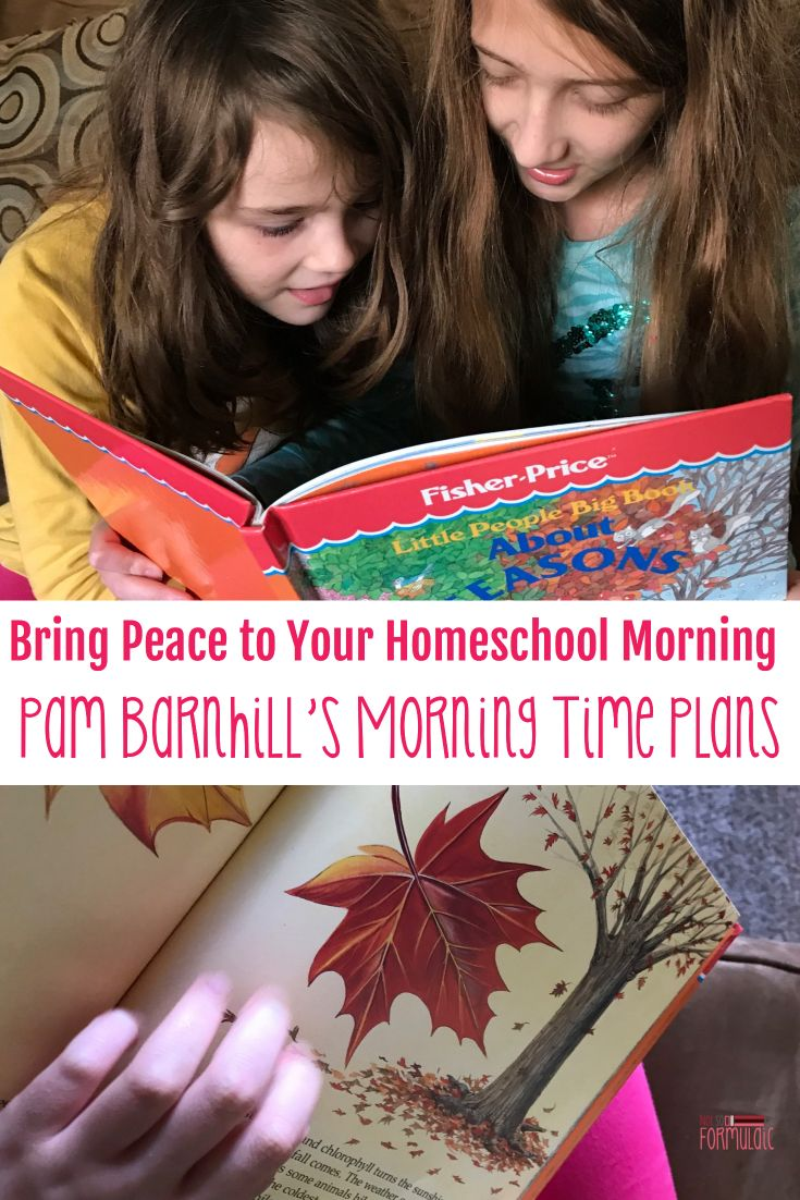 Peaceful mornings can set the tone for a successful homeschool day. Pam Barnhill'sMorning Time Planshave given me a much-needed buffer, and my children some much-needed fun.