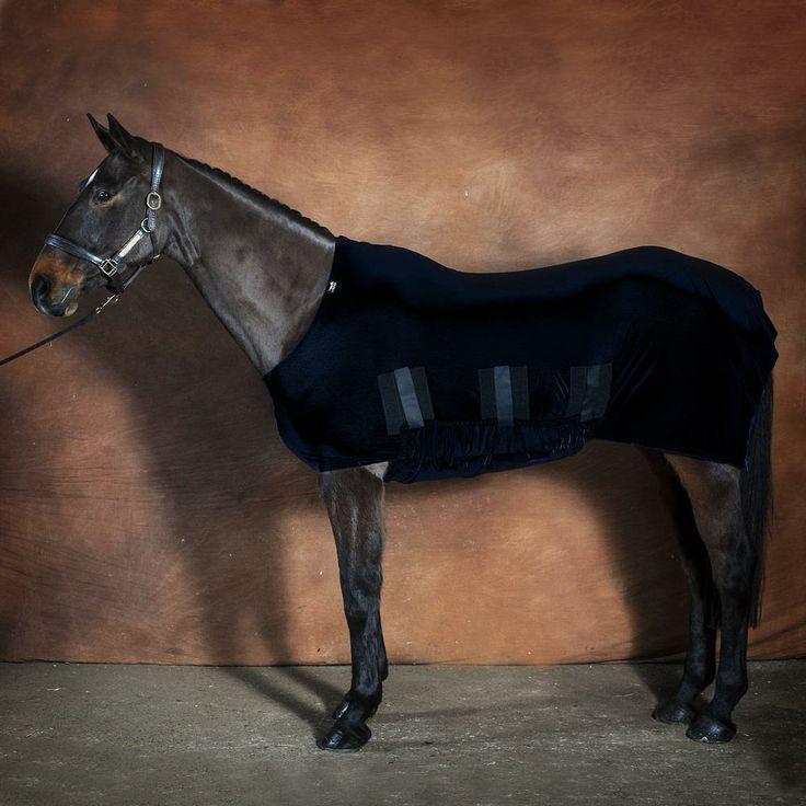 Rugs For Horses Horse Hoods Original Clothing