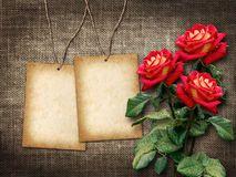 Tarjeta Para La Invitación O La Enhorabuena Con Las Rosas Rojas - Descarga De Over 39 Millones de fotos de alta calidad e imágenes Vectores% ee%. Inscríbete GRATIS hoy. Imagen: 35911432