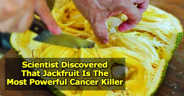 Scientist Discovered That Jackfruit Is The Most Powerful Cancer Killer - Central Readers