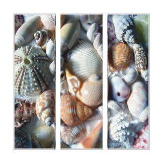 Tropische Strand-Muschel-Fotografie-Leinwand Leinwand Drucke
