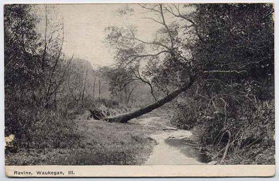 The ravine in Waukegan Illinois from Ray Bradbury's Dandelion Wine