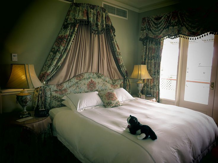"""A """"do not disturb"""" cat at Chateau Yering, Vic, Australia 