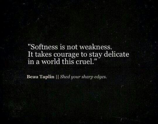 Cruel World Quotes Best 105 Famous Quotes About Cruel: 25+ Best Ideas About Be Soft On Pinterest