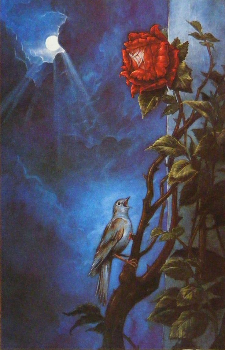 """PJ Lynch Gallery: """"The Nightingale and the Rose"""" by Oscar Wilde This is a different Nightingale story and one that is not for children. In fact it still breaks my heart. Poor Wilde, to have written such sad stories about love. The selfish giant by Wilde is much more child friendly and highly recommended."""
