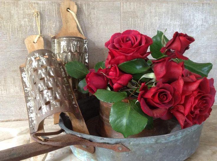 roses in grandma's pan