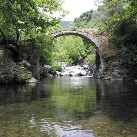 Kaz Dağları, şehirde bunalıp, nefes almak isteyenler için tam bir oksijen cenneti! Mutlaka gitmenizi öneririz.