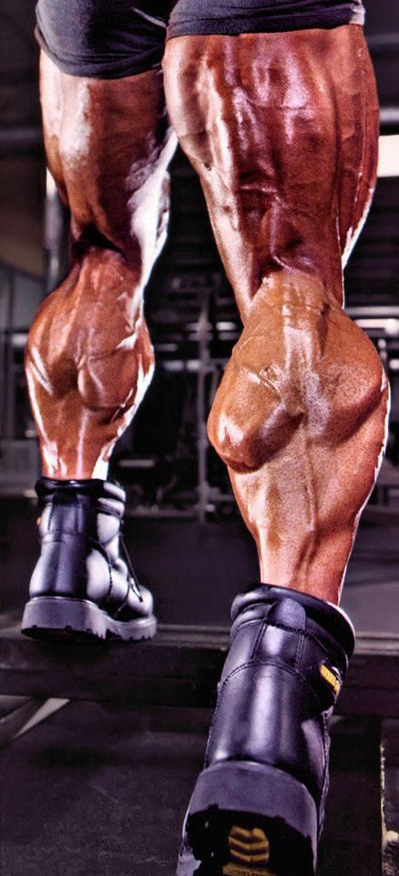 61 best images about BodyBuilding Photos on Pinterest | In