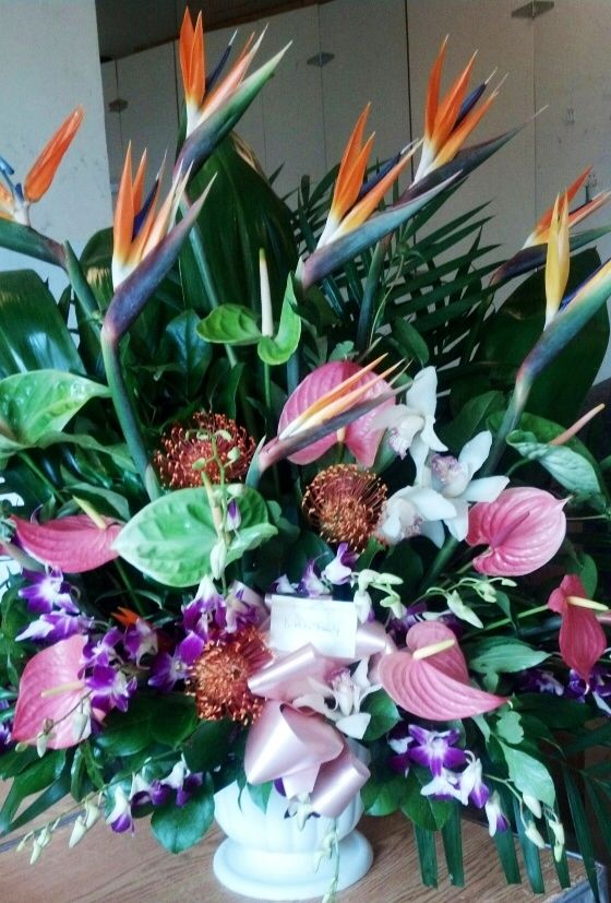 Birds of Paradise coupled with Red Anthurium. Toronto/GTA florist