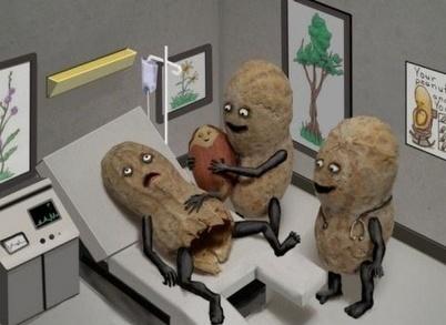 Born a nut!