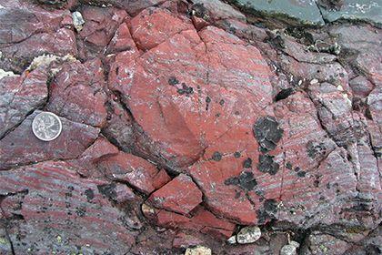 Найден древнейший организм на Земле http://mnogomerie.ru/2017/03/01/naiden-drevneishii-organizm-na-zemle/  Исследованные породы Международный коллектив палеобиологов обнаружил древнейшие окаменелые фрагменты жизни на Земле. Соответствующее исследование опубликовано в журнале Nature. Следы бактерий, живших на планете около 3770-4280 миллионов лет назад вблизи подводных гидротермальных источников, найдены в породах Нуввуагиттука — древнейших скал планеты. Ученые в исследованных образцах…