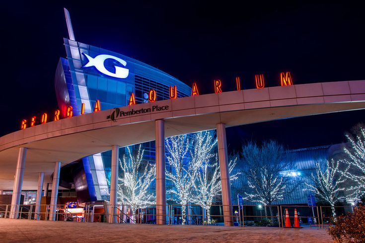 The 25 Best Ideas About Georgia Aquarium On Pinterest
