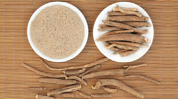 "Have you heard of ashwagandha? Discover the life-extending ""miracle"" herb that's one of the most comprehensive healing substances known to man."
