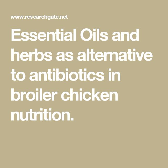 Essential Oils and herbs as alternative to antibiotics in broiler chicken nutrition.