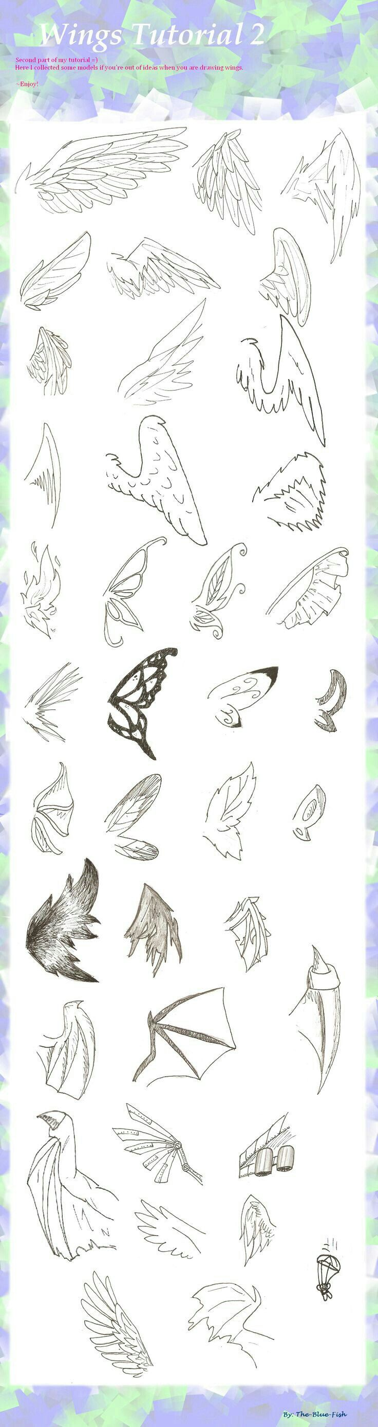 Wings tutorial drawing infographic.