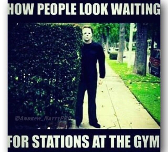 WWW.THUNDERSWOLE.COM Gotta admit…I'm guilty of doing this lol Well, at least there's a spot to sit & wait at my gym #THUNDERSWOLE #active #gymlife #healthychoices #determination #diet #swole #bodybuilding #powerlifting #lifestyle #fit #healthy #gymflow #fitnessaddict #train #health #eatclean #fitness #gym #exercise #photooftheday #cute #life #dance #bodybuilding #hashtags #flexing #flexibility #fitchick